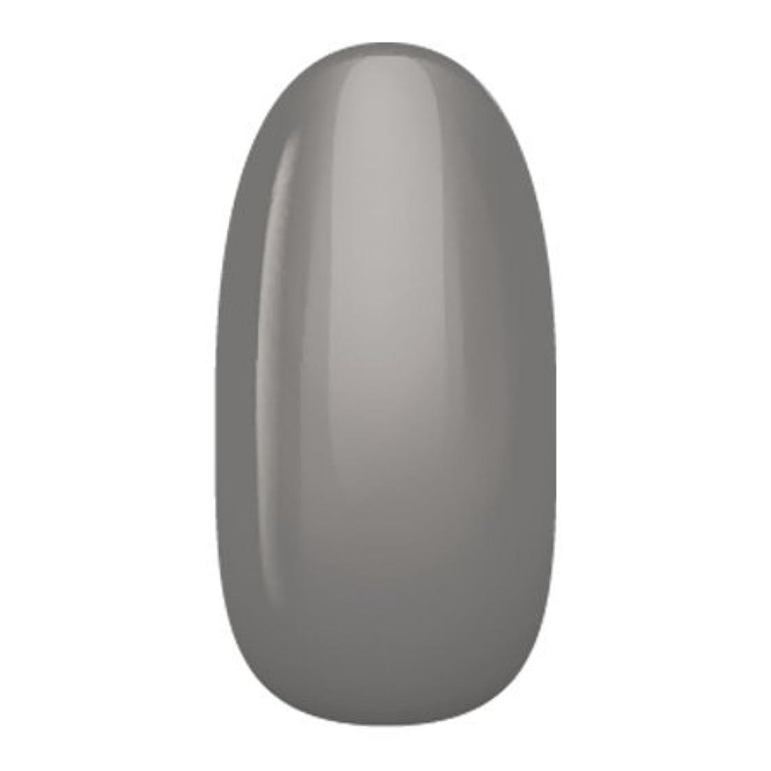 びっくりしたマトロン知性アイニティ ハイエンドカラー NE-06M チャコールグレイ 3g