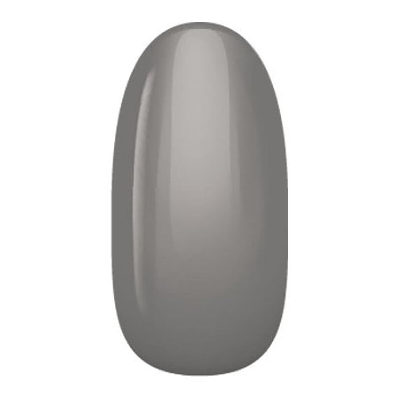 割るハイライト戸棚アイニティ ハイエンドカラー NE-06M チャコールグレイ 3g