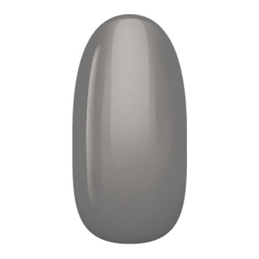 物足りない活性化甲虫アイニティ ハイエンドカラー NE-06M チャコールグレイ 3g