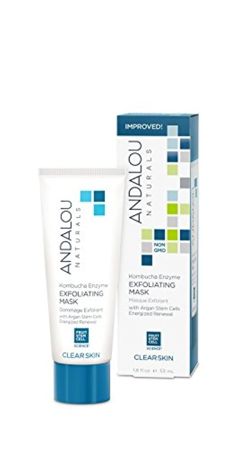 オーナメント明示的にサポートオーガニック ボタニカル パック マスク フェイスマスク ナチュラル フルーツ幹細胞 「 KE エクスフォリエーティングマスク 」 ANDALOU naturals アンダルー ナチュラルズ