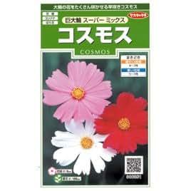 サカタのタネ 花の種 コスモス