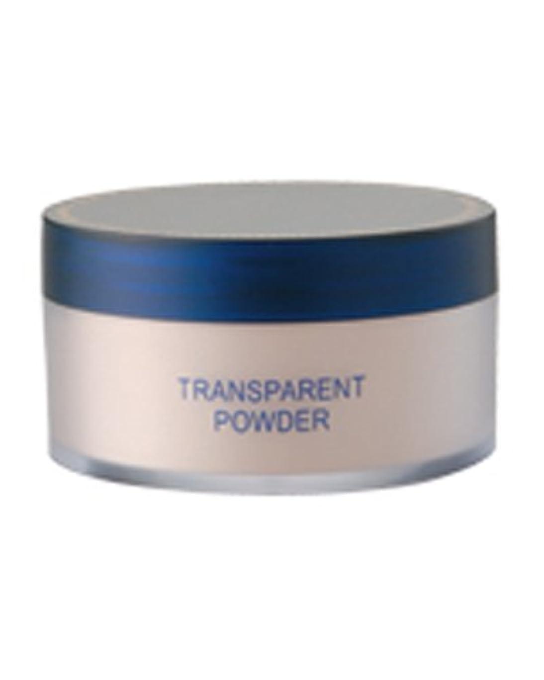 不潔絡み合い幻想的トランスパラントパウダー 30g (粉おしろい パフ付)