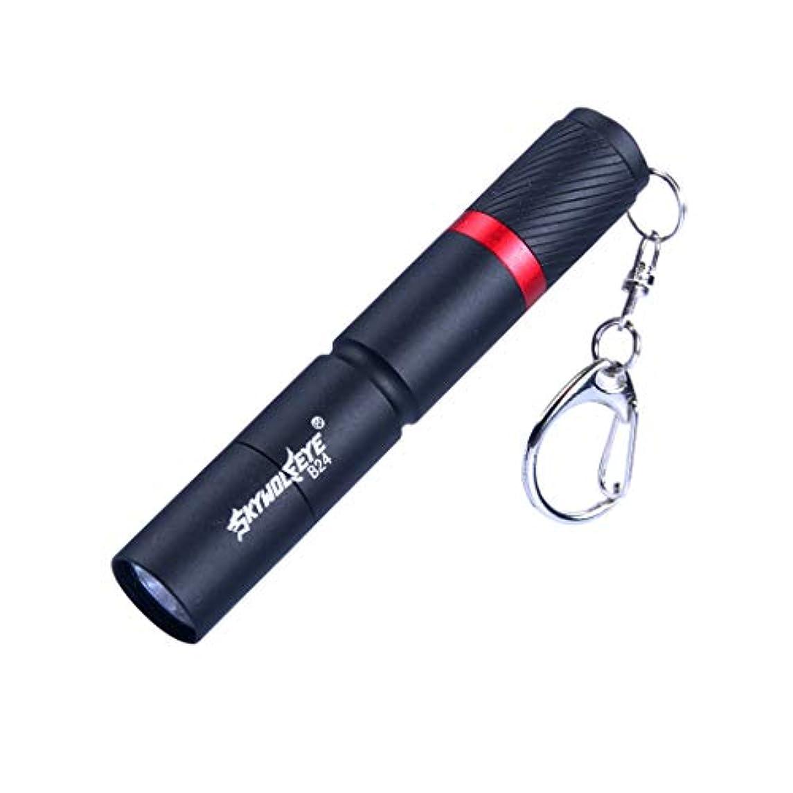 お酒ラケット処方するMini LED 懐中電灯 キーチェーン付きー 便利 3点灯モード TangQI 充電式 調節可能な焦点距離 単四電池(含まれません) 多用途 防水 停電 地震 キャンプ 読書 ハイキング