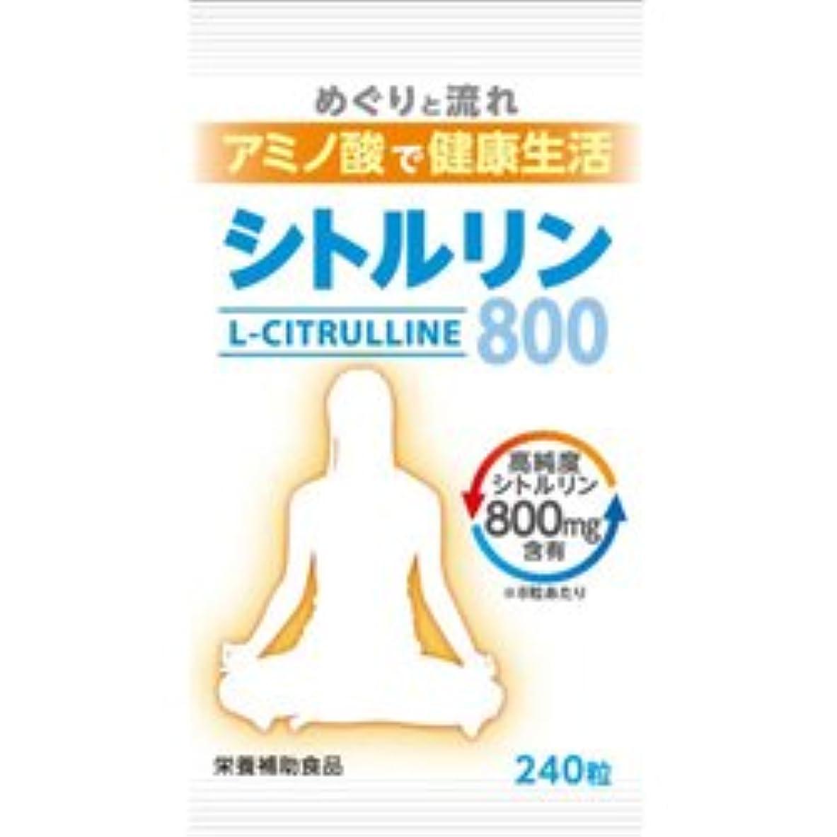 氷紛争くつろぎ【ウェルネスジャパン】シトルリン800 240粒 ×20個セット