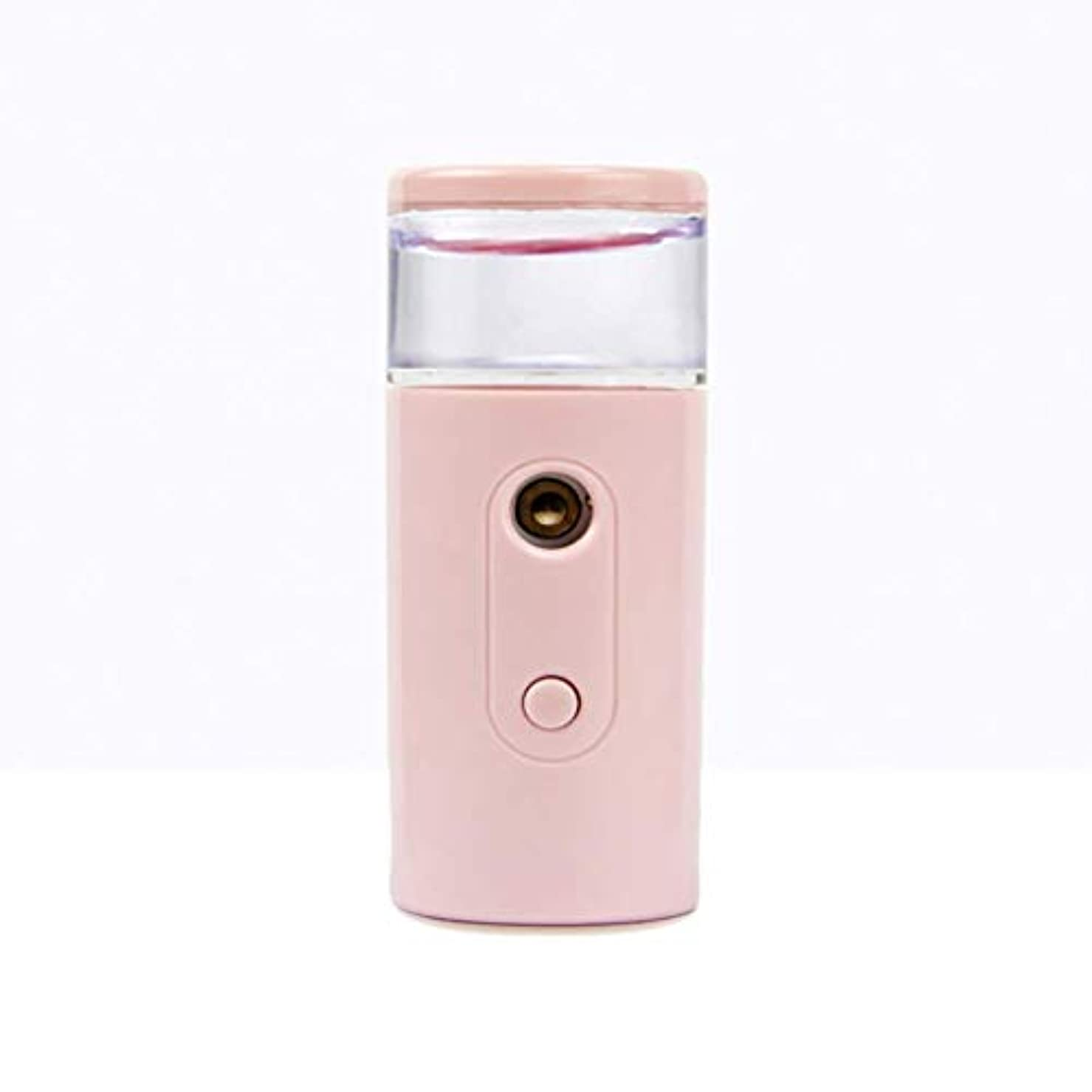 パイ挽く数値Nano Facial Mister、30ml視覚的水タンクを備えた充電式フェイシャルスチーマー、スキンケア、旅行用保湿&保湿