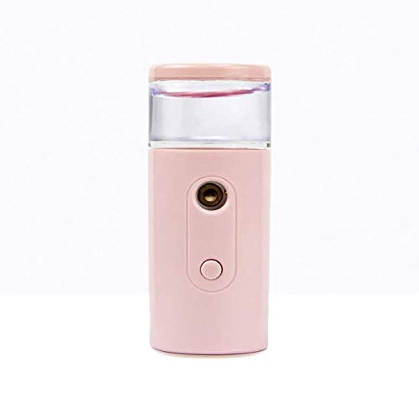 増幅器ファームボックスNano Facial Mister、30ml視覚的水タンクを備えた充電式フェイシャルスチーマー、スキンケア、旅行用保湿&保湿