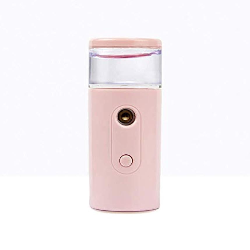 無関心許可する開示するNano Facial Mister、30ml視覚的水タンクを備えた充電式フェイシャルスチーマー、スキンケア、旅行用保湿&保湿