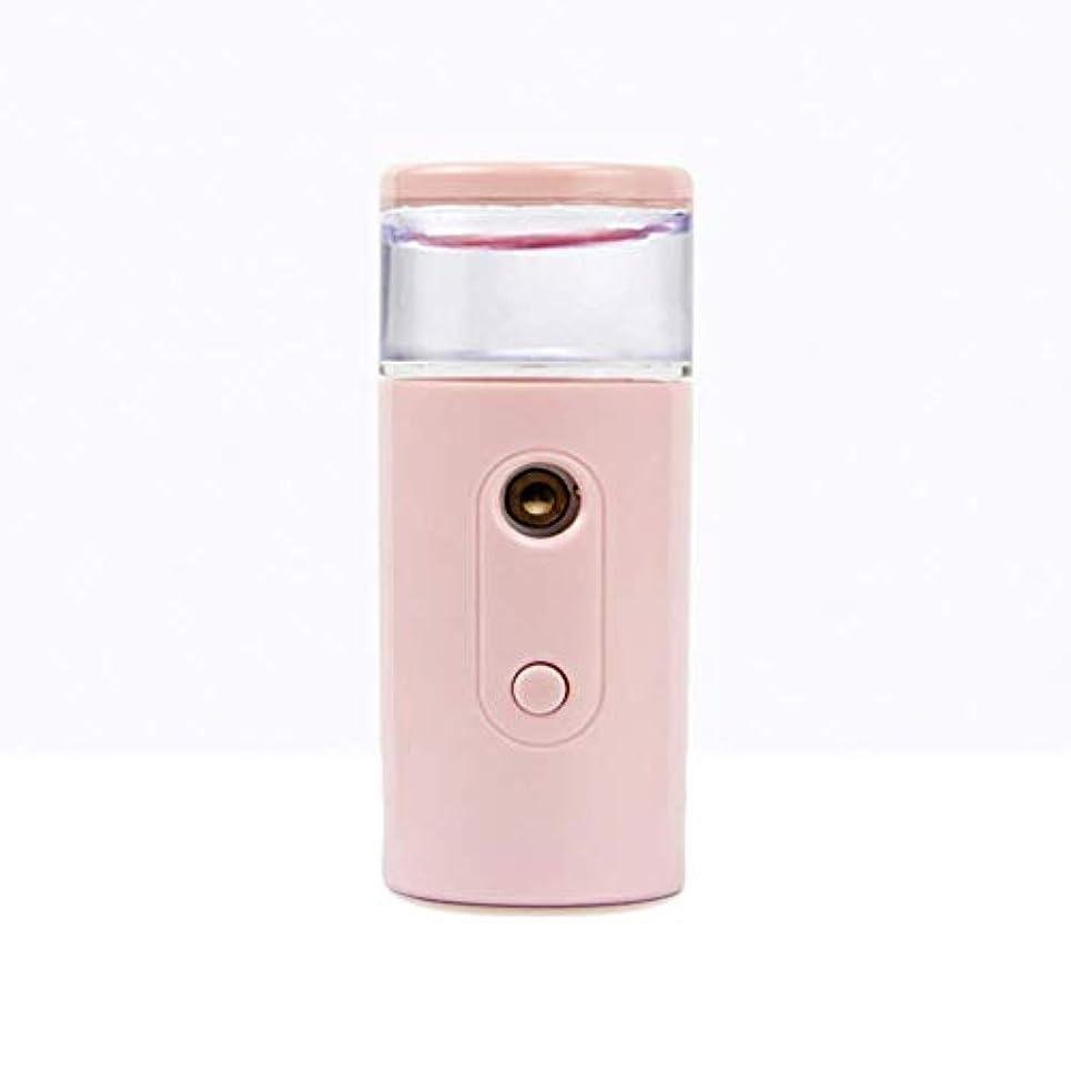 ハードリング白い注文Nano Facial Mister、30ml視覚的水タンクを備えた充電式フェイシャルスチーマー、スキンケア、旅行用保湿&保湿