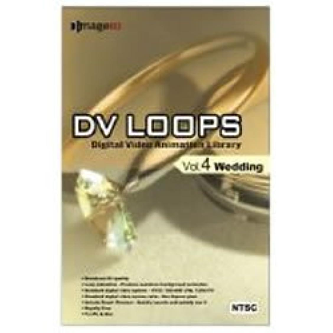 手のひら前部きちんとしたDV LOOPS Vol.4 ウエディング