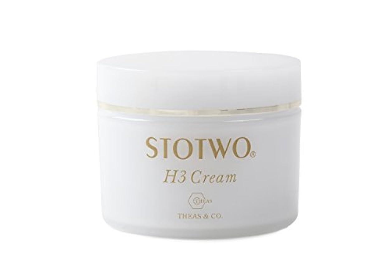 代わりにを立てるいちゃつくボリュームストツ(STOTWO)H3 クリームヒアルロン酸 25g