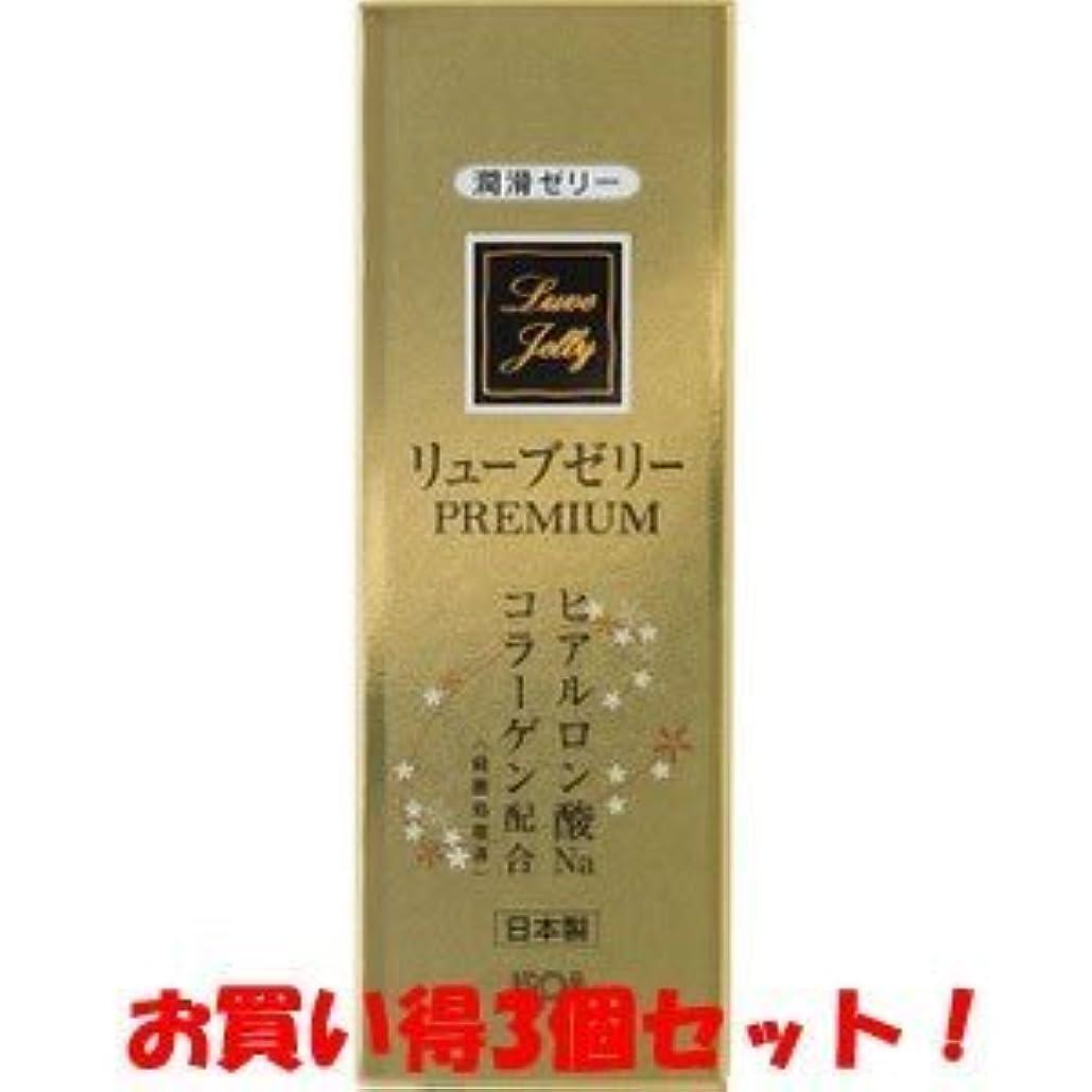 不平を言う中性期間(ジェクス)リューブゼリー プレミアム PREMIUM 55g(お買い得3個セット)