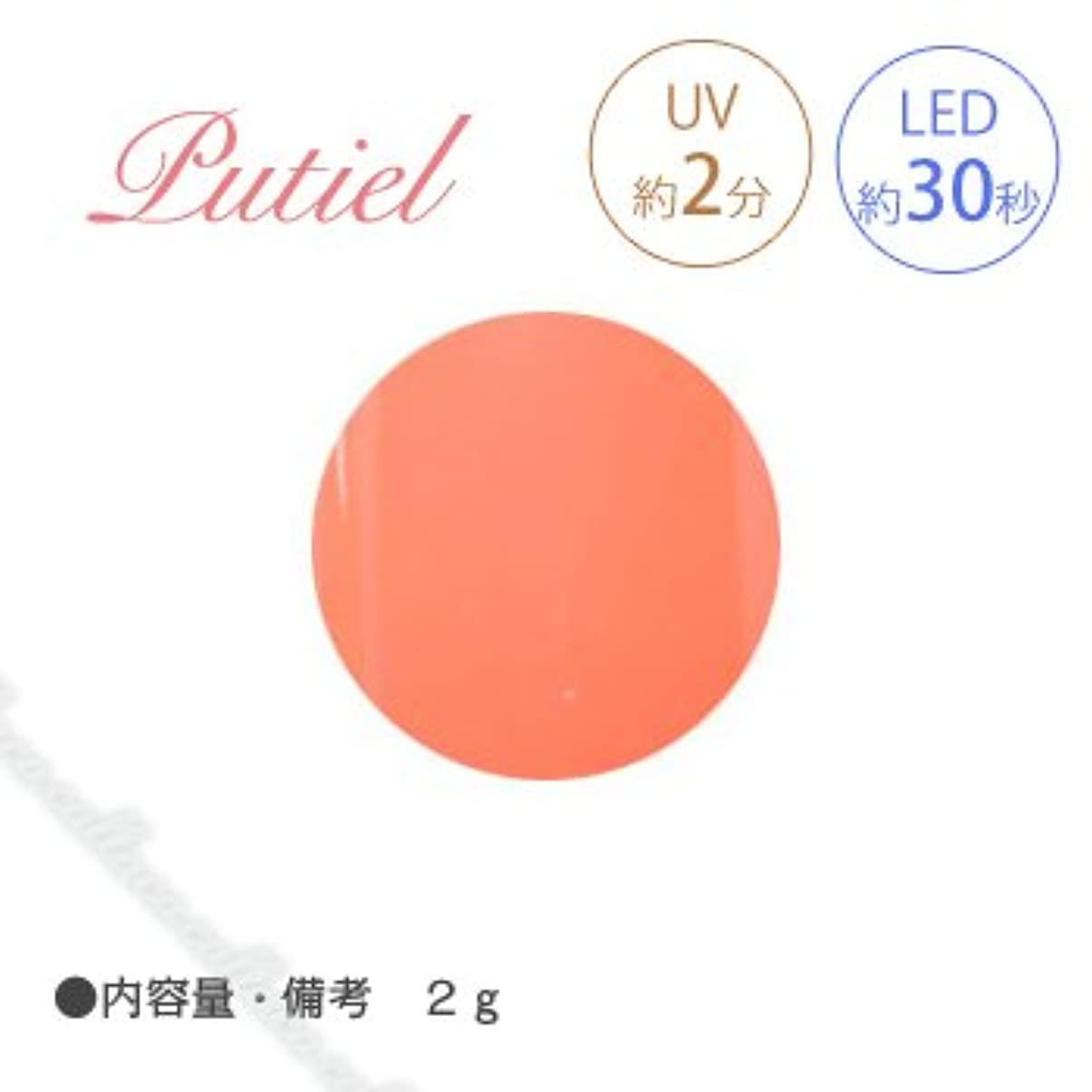 体操メリーフィードオンPutiel プティール カラージェル 107 ビタミンオレンジ 2g