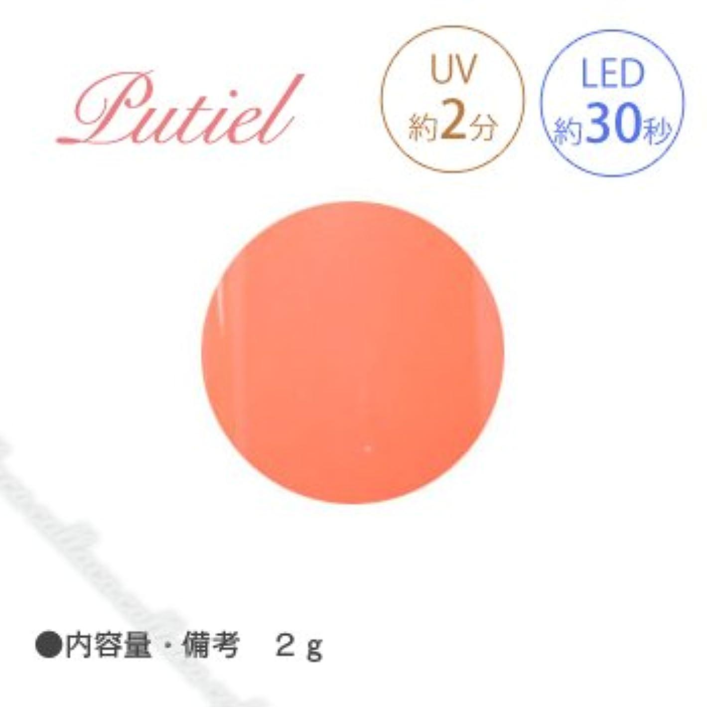 気質淡い目を覚ますPutiel プティール カラージェル 107 ビタミンオレンジ 2g