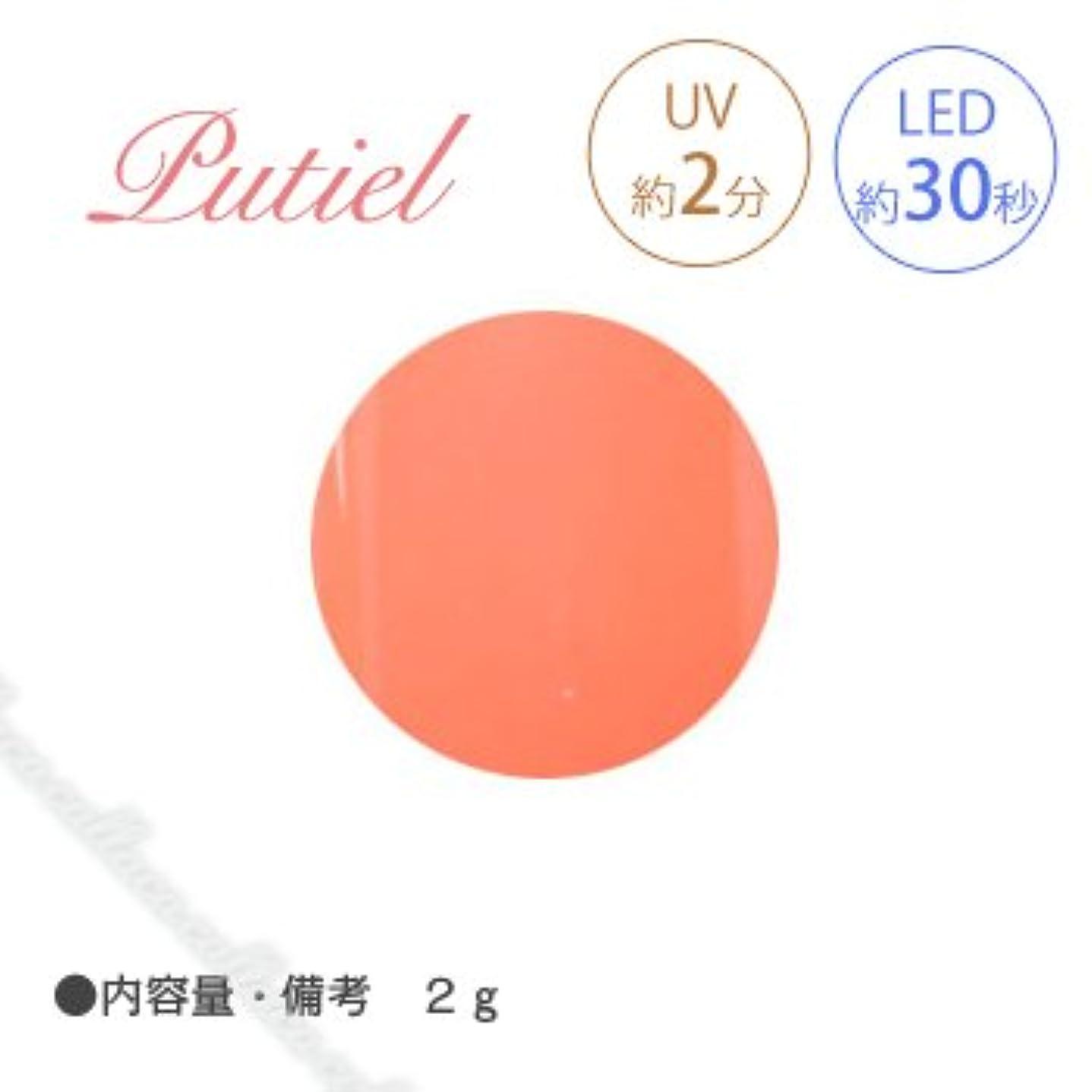 黙認する刺繍ミシン目Putiel プティール カラージェル 107 ビタミンオレンジ 2g