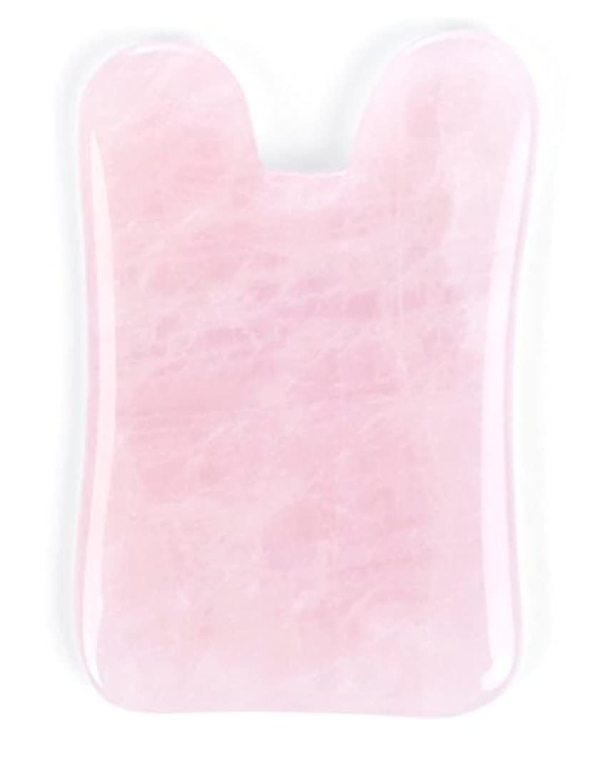 メッシュ悲惨溶融Echo & Kern ピンクローズクォーツかっさプレート マッサージプレートPink Rose Quartz Gua Sha Board-Therapeutic Relief and Skin Renewal -Premium...