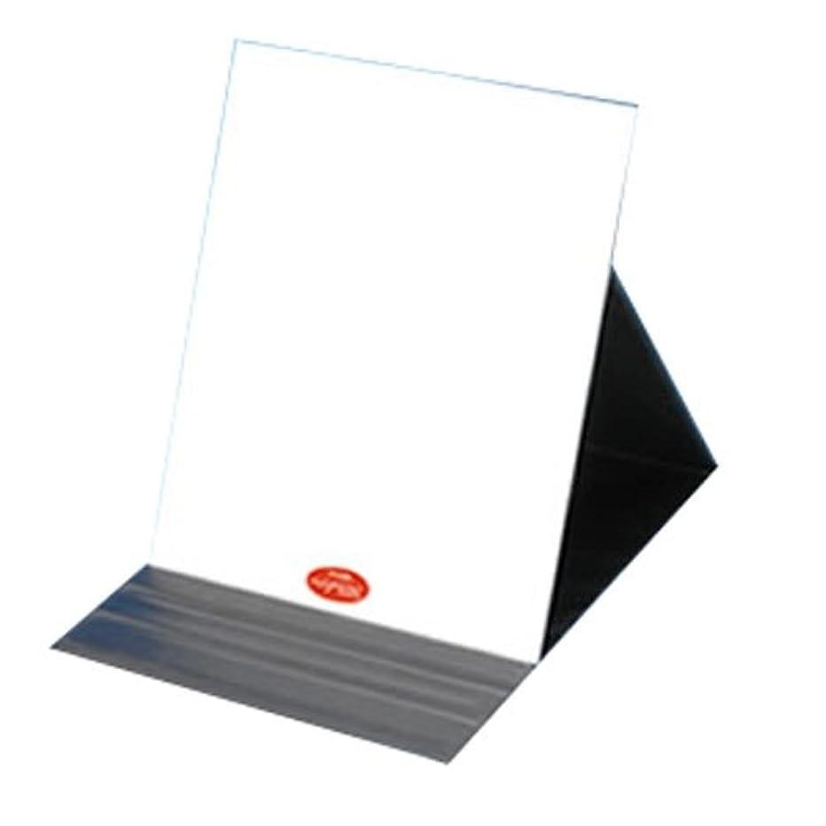 揮発性スタック測定可能ナピュア プロモデル角度調整3段階付き折立ミラー エコ3L
