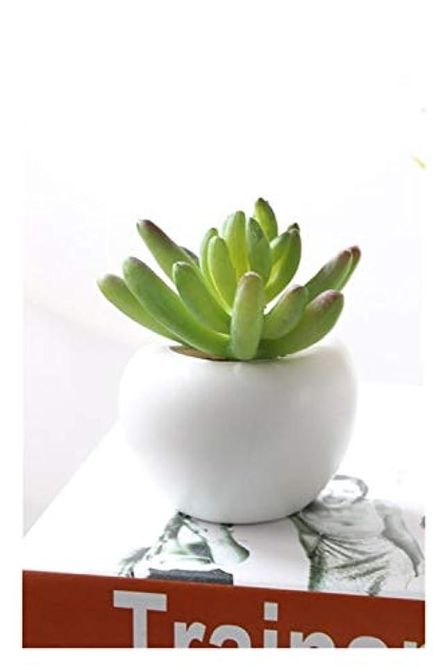 予定オーディション節約する冷蔵庫マグネット緑の鉢植えの盆栽は、人工花を鉢植え 長持ちする (Color : D)