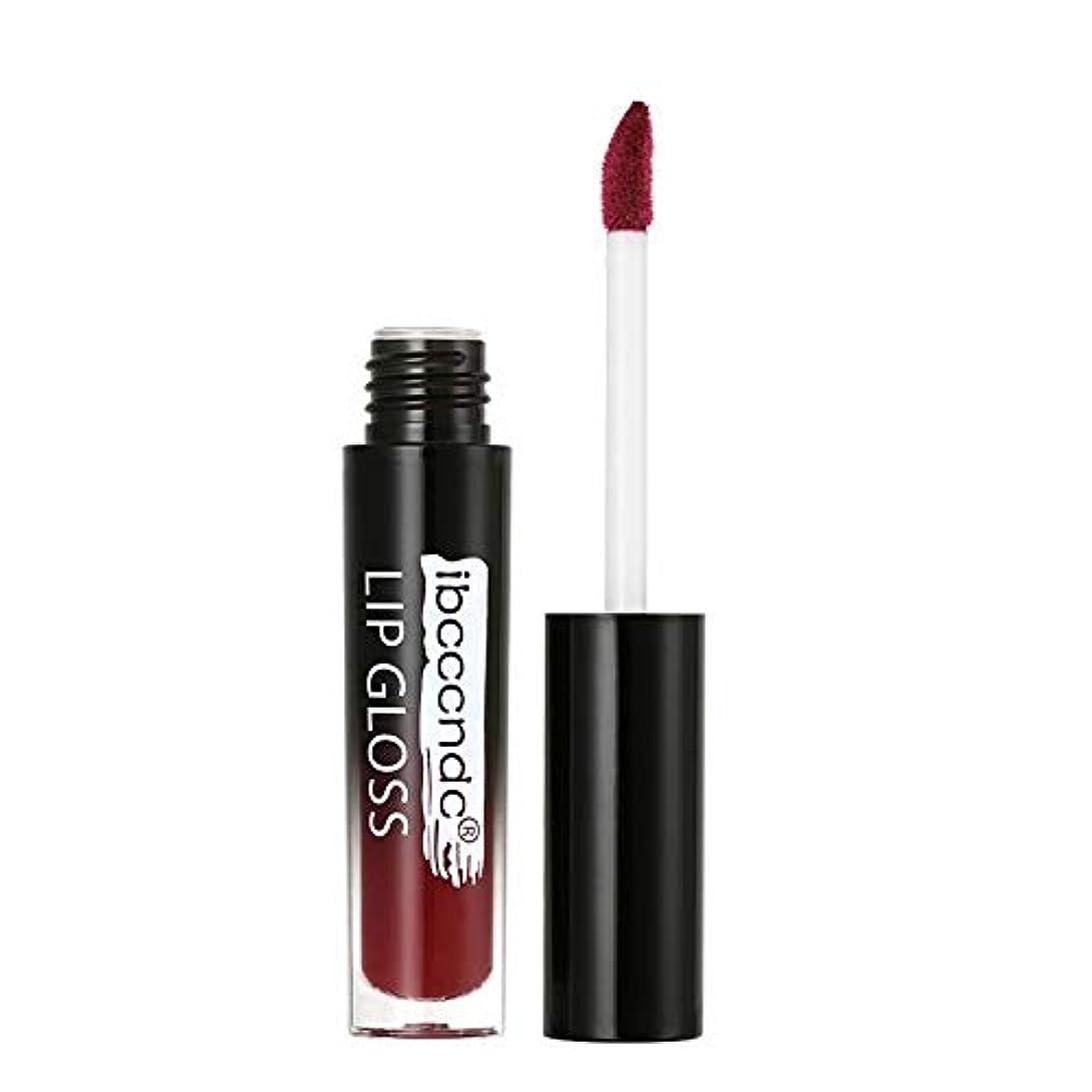 ピクニック履歴書毛細血管口紅 液体 モイスチャライザー リップスティック リキッド 防水 リップバーム 化粧品 美容 リップクリーム メイク 唇に塗っっていつもよりセクシー魅力を与えるルージュhuajuan
