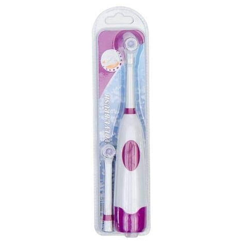 南不実迷路ZHANGXIUE バッテリーは、口腔衛生ない充電式歯ブラシのために子供を運営1セットの電動歯ブラシで2ブラシヘッド (Color : Purple)