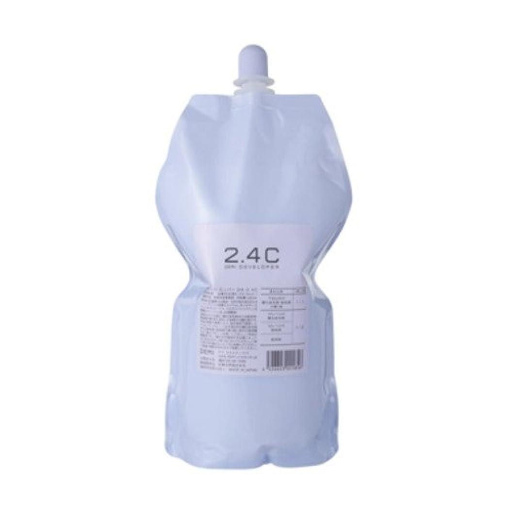 エンジニアセンサー精神デミ ディベロッパー オキシ 2.4%(2剤)