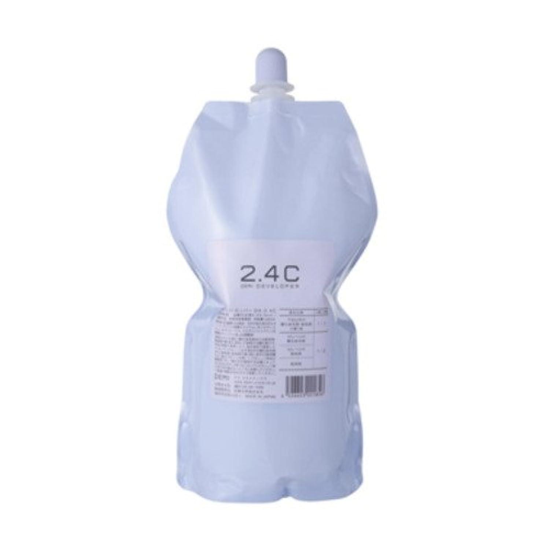 案件銛排出デミ ディベロッパー オキシ 2.4%(2剤)