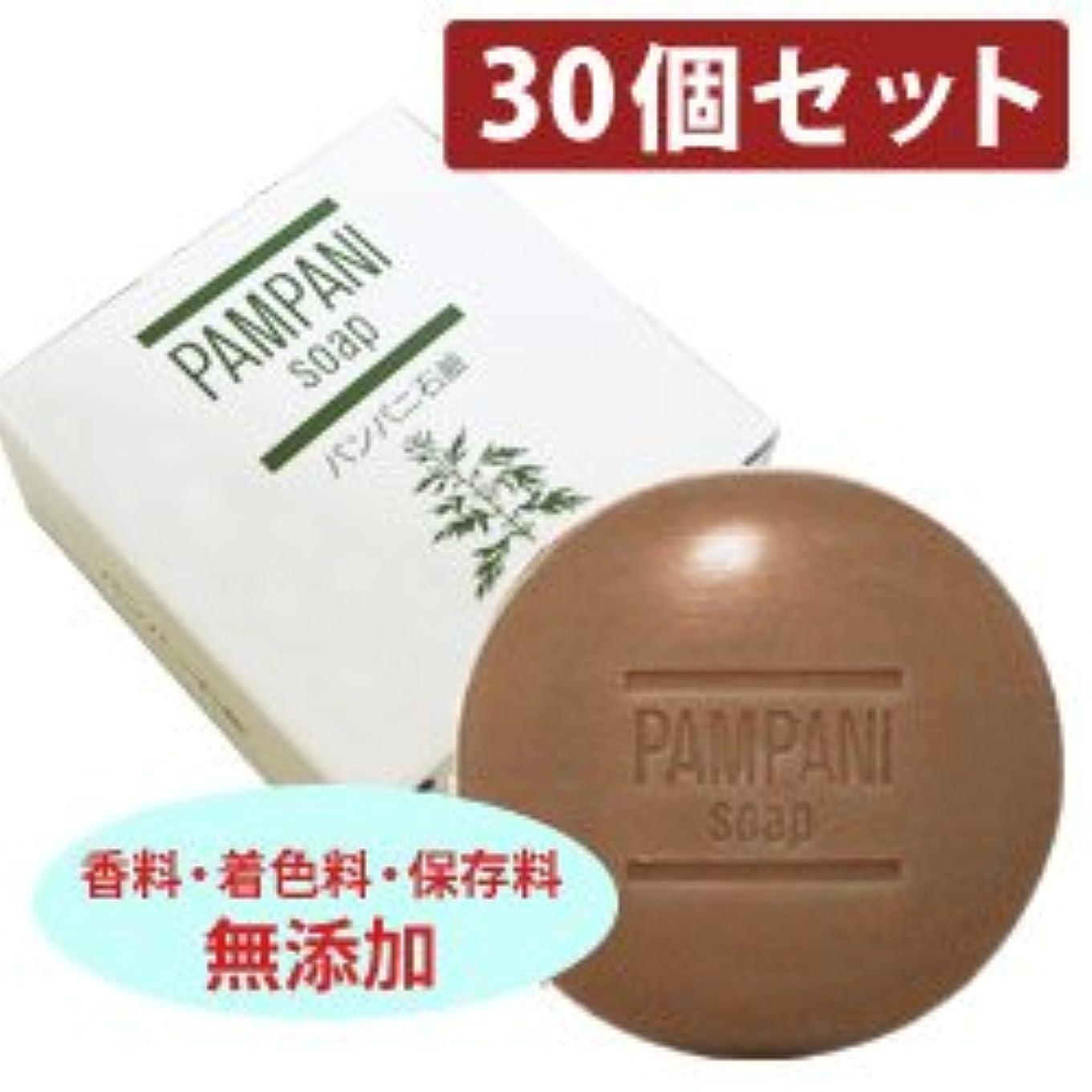 列挙する混合弾薬パンパニ 石鹸?90g 【30個セット】