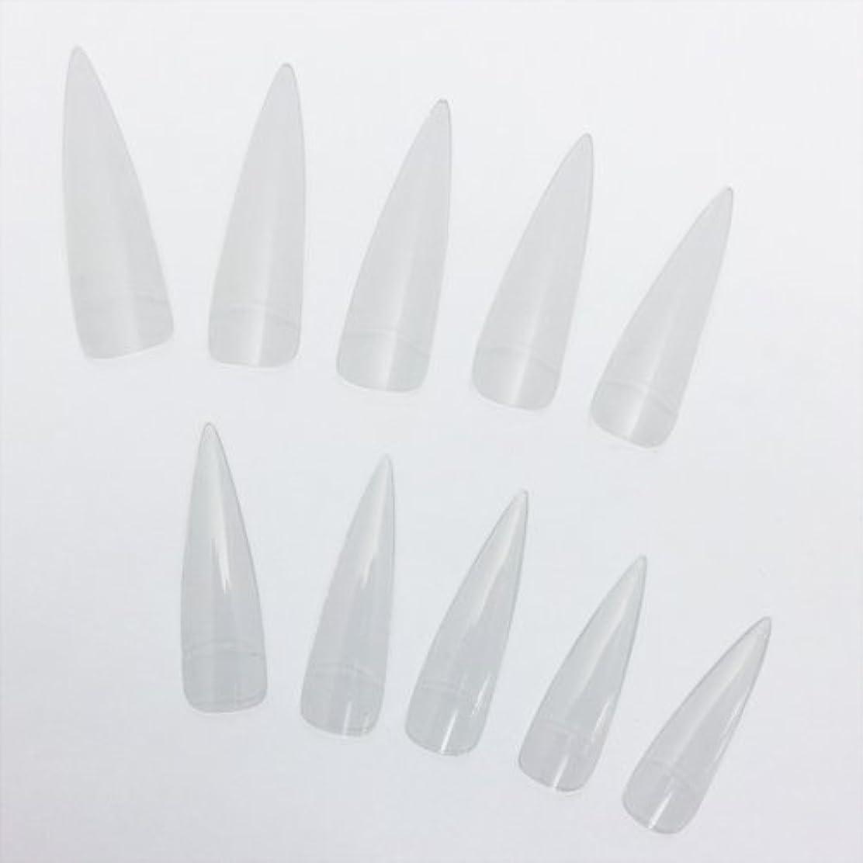 鍔フェミニンありふれたロングネイルチップ クリア 20枚セット