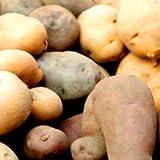 北海道 直送 じゃがいも6種食べくらべ 野菜セット (男爵・北あかり・メークイン・インカのめざめ・シャドークイーン・ノーザンルビー各1kg合計6kg)