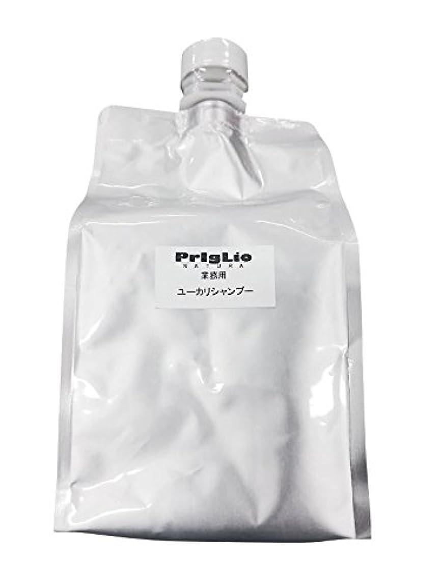呪い遊具毛布PrigLio(プリグリオ) C ユーカリシャンプー レフィル 900ml