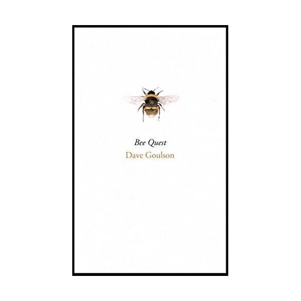 Bee Questの紹介画像2