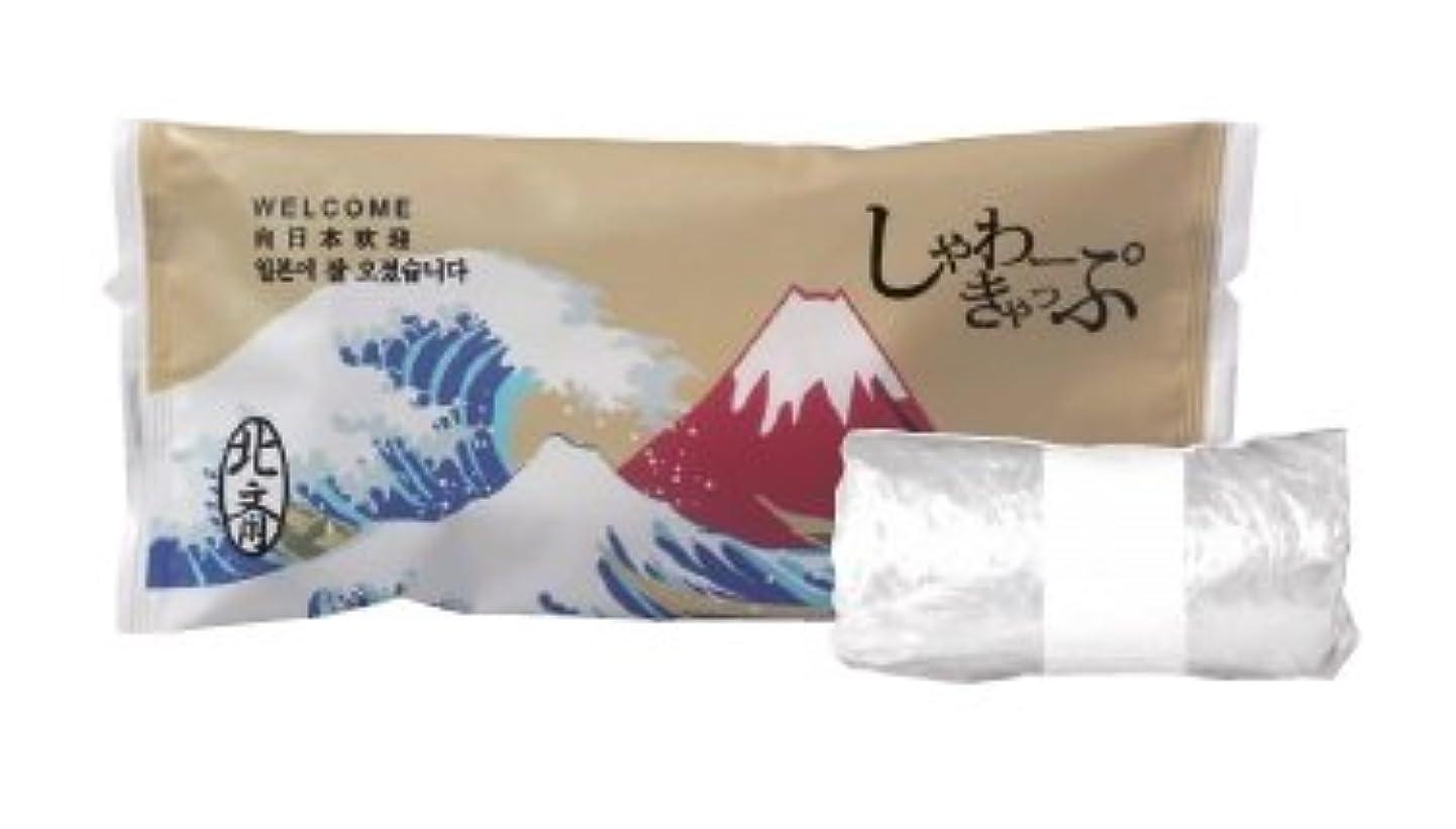 陰謀下る打倒シャワーキャップ 2000個 JAPANSERIES 日本シリーズ 業務用 アメニティ 葛飾北斎