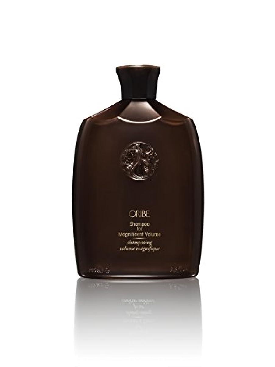 算術国民投票家庭教師Shampoo For Magnificent Volume