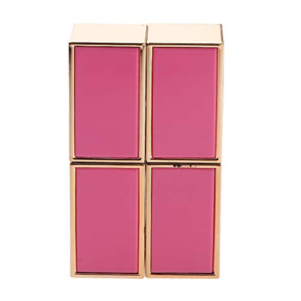 繕う核農夫2本 口紅管 口紅チューブ DIY リップバーム/リップスティック 手作り化粧品 2色選べ - ピンク