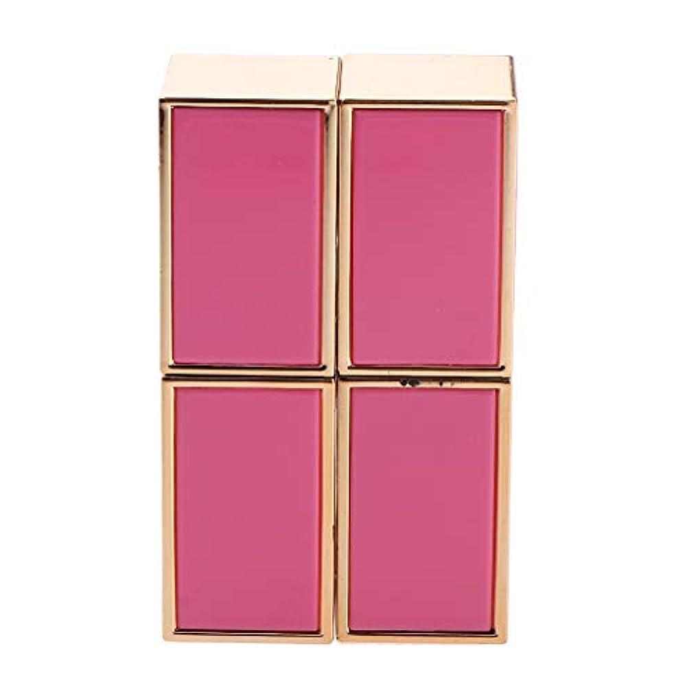 急勾配のありふれた引き出す口紅 容器 空 口紅チューブ 口紅コンテナ リップグロス管 手作り口紅容器 固体香水 2色選べ - ピンク