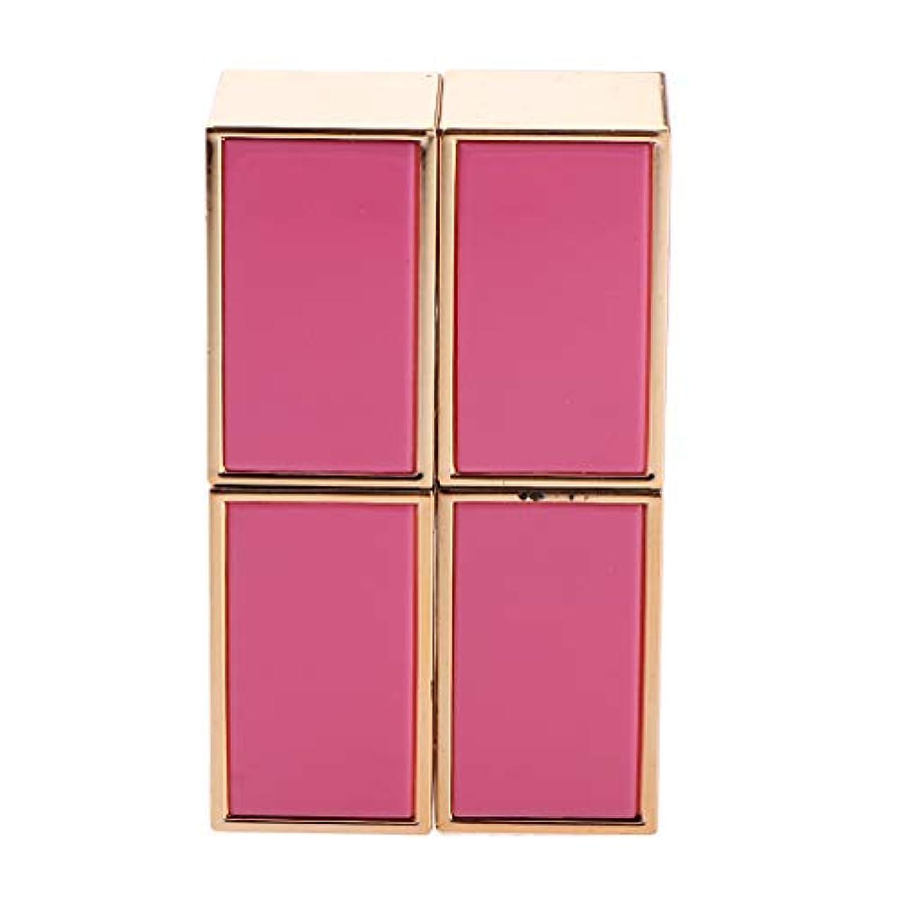 戦闘除去リンク口紅 容器 空 口紅チューブ 口紅コンテナ リップグロス管 手作り口紅容器 固体香水 2色選べ - ピンク