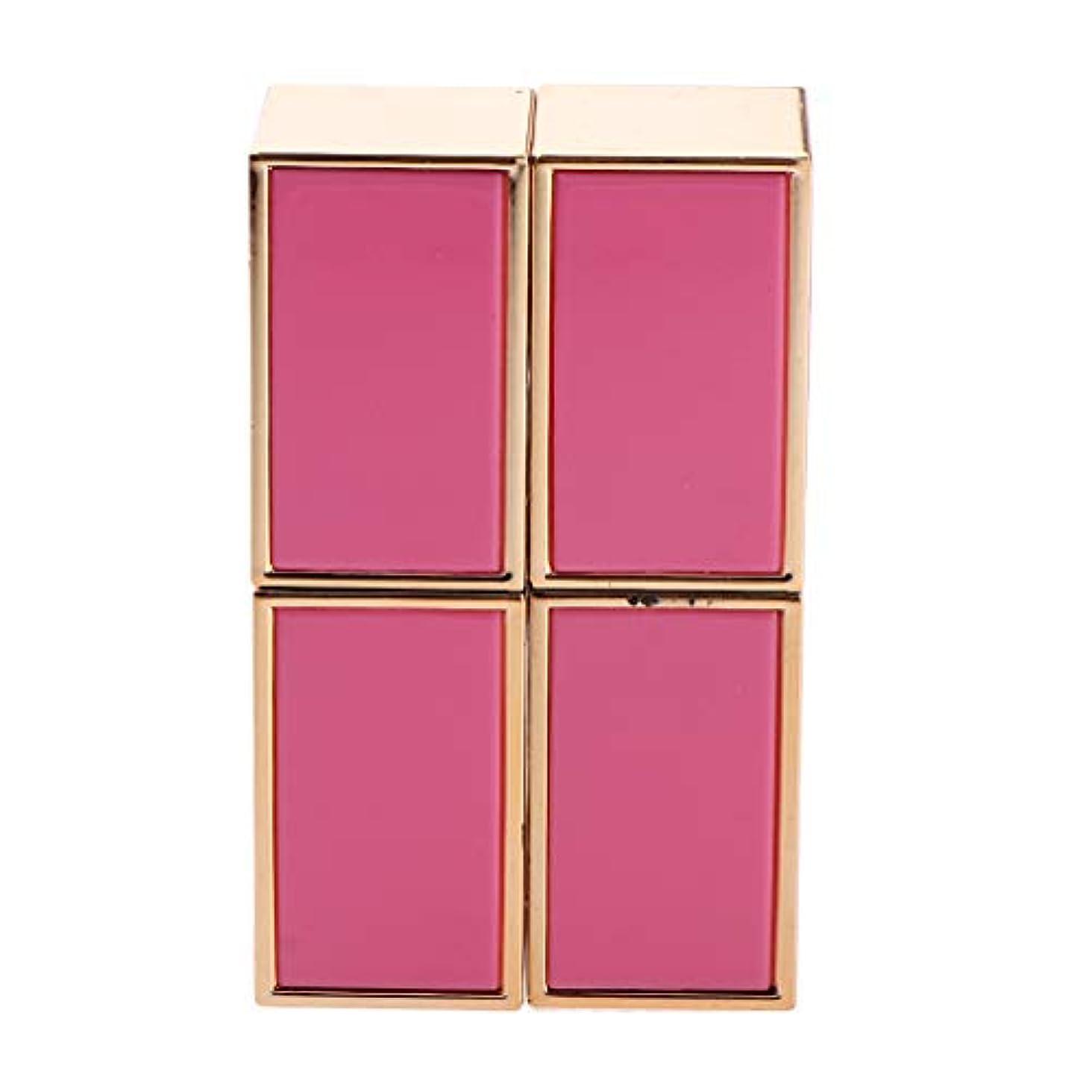 広告主良性喜び口紅 容器 空 口紅チューブ 口紅コンテナ リップグロス管 手作り口紅容器 固体香水 2色選べ - ピンク