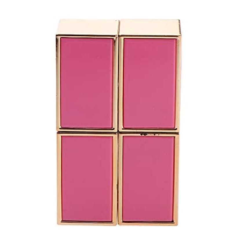 綺麗な主流ほのめかす2本 口紅管 口紅チューブ DIY リップバーム/リップスティック 手作り化粧品 2色選べ - ピンク