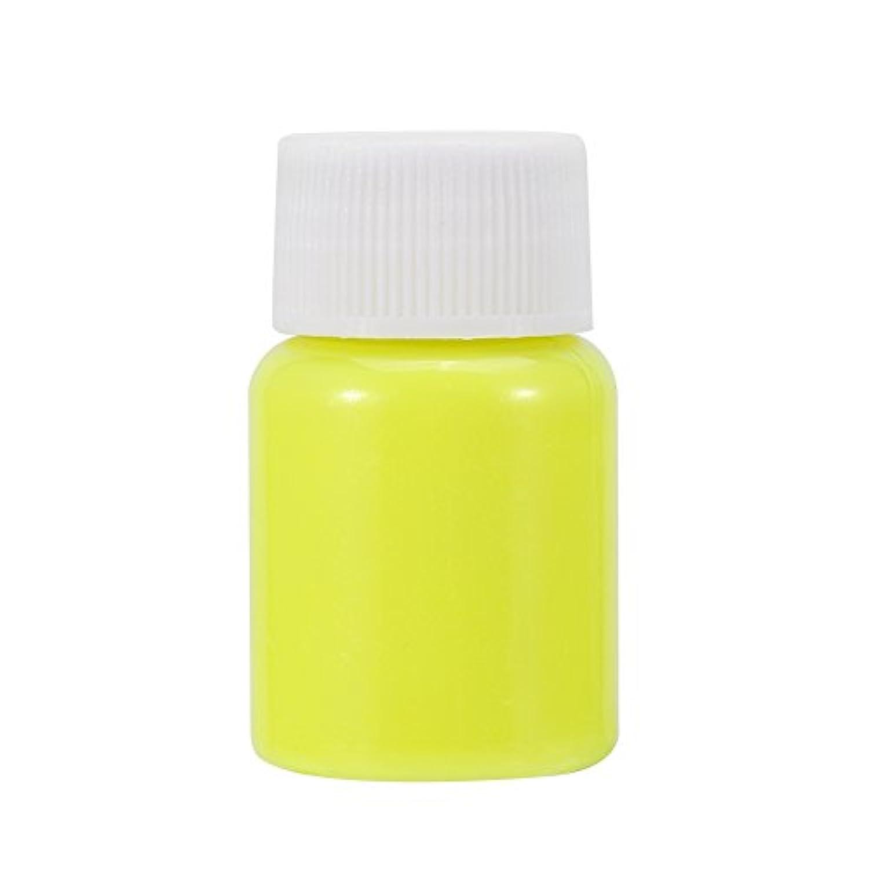 光る粉 蛍光粉、6個入り蛍光ペンキハロウィンピグメントルミナスグローダークカラーメイク25g /ボトル (1)
