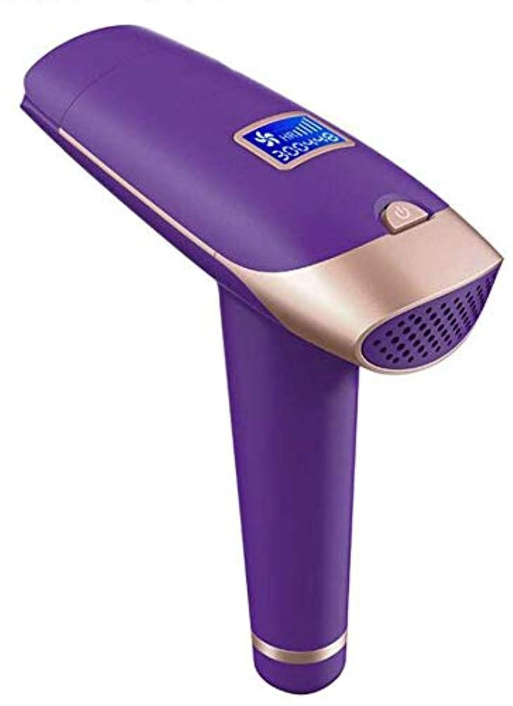 燃料氷プライバシーHSBAIS 女性用脱毛システム、無痛 常設30万点滅 顔/脇の下/腕/胸/背中/ビキニライン/脚用,Purple