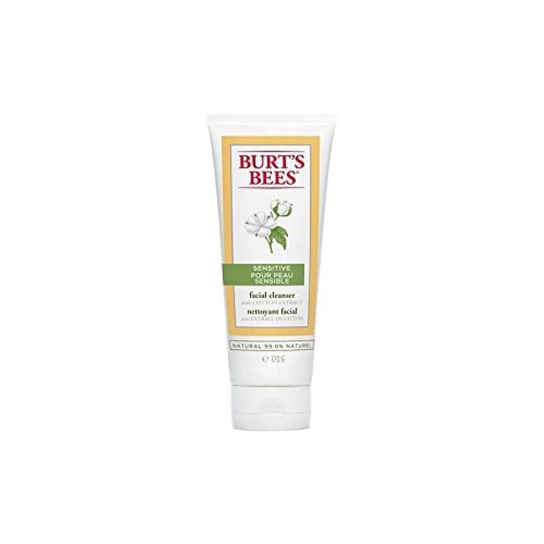 無傷谷伴うバーツビー敏感な洗顔料の170グラム x2 - Burt's Bees Sensitive Facial Cleanser 170G (Pack of 2) [並行輸入品]