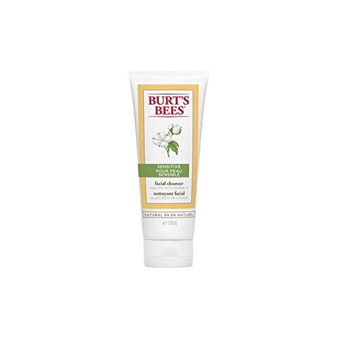 志す配分インサートバーツビー敏感な洗顔料の170グラム x4 - Burt's Bees Sensitive Facial Cleanser 170G (Pack of 4) [並行輸入品]