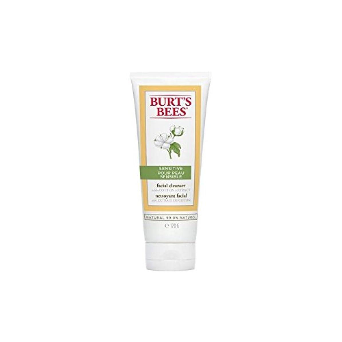 乱す未接続成分バーツビー敏感な洗顔料の170グラム x4 - Burt's Bees Sensitive Facial Cleanser 170G (Pack of 4) [並行輸入品]