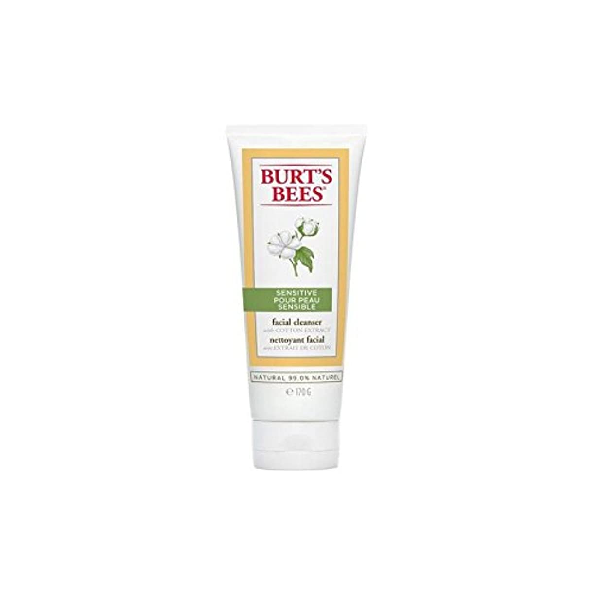 設置ホステル過激派Burt's Bees Sensitive Facial Cleanser 170G (Pack of 6) - バーツビー敏感な洗顔料の170グラム x6 [並行輸入品]