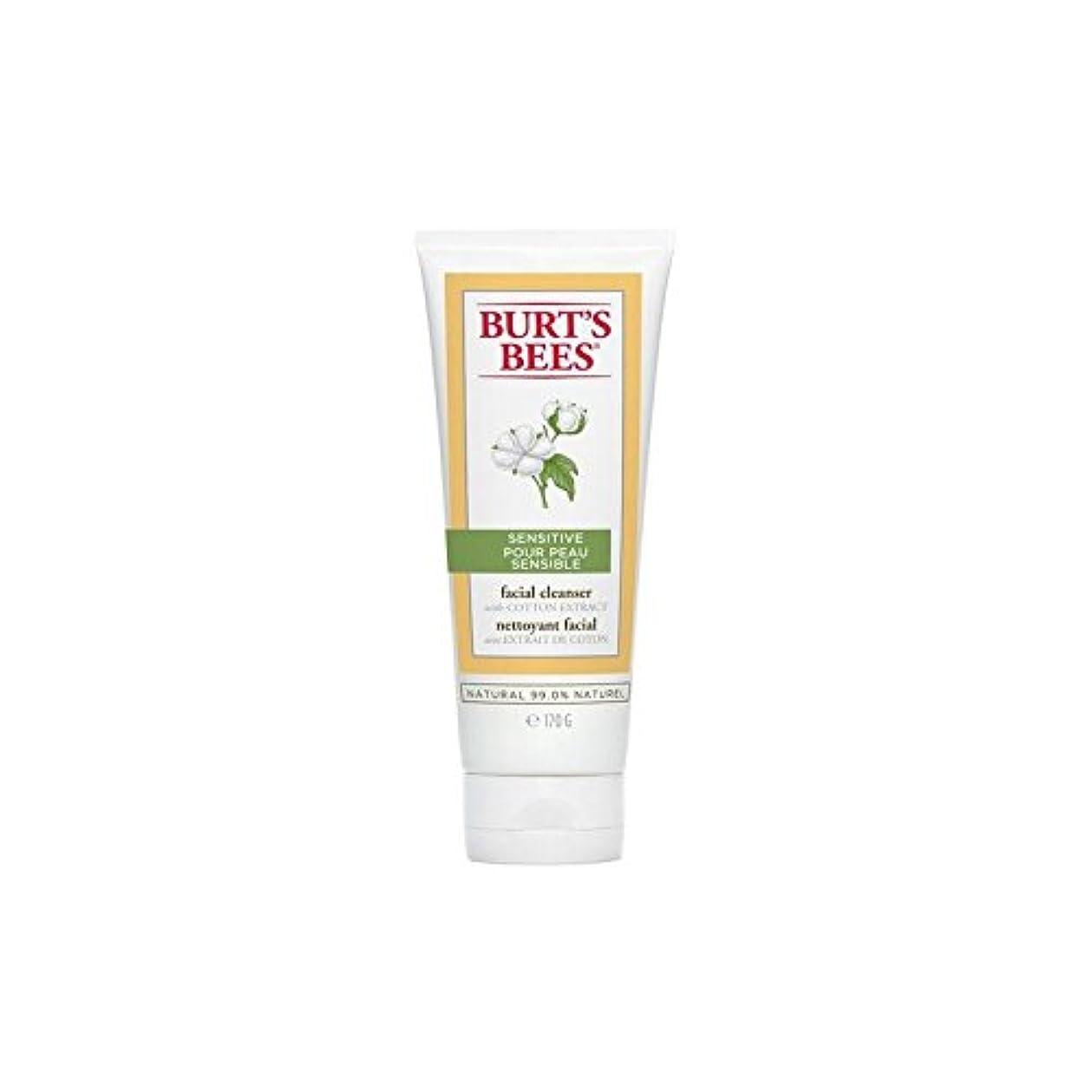 暴行尊敬する薄めるBurt's Bees Sensitive Facial Cleanser 170G - バーツビー敏感な洗顔料の170グラム [並行輸入品]