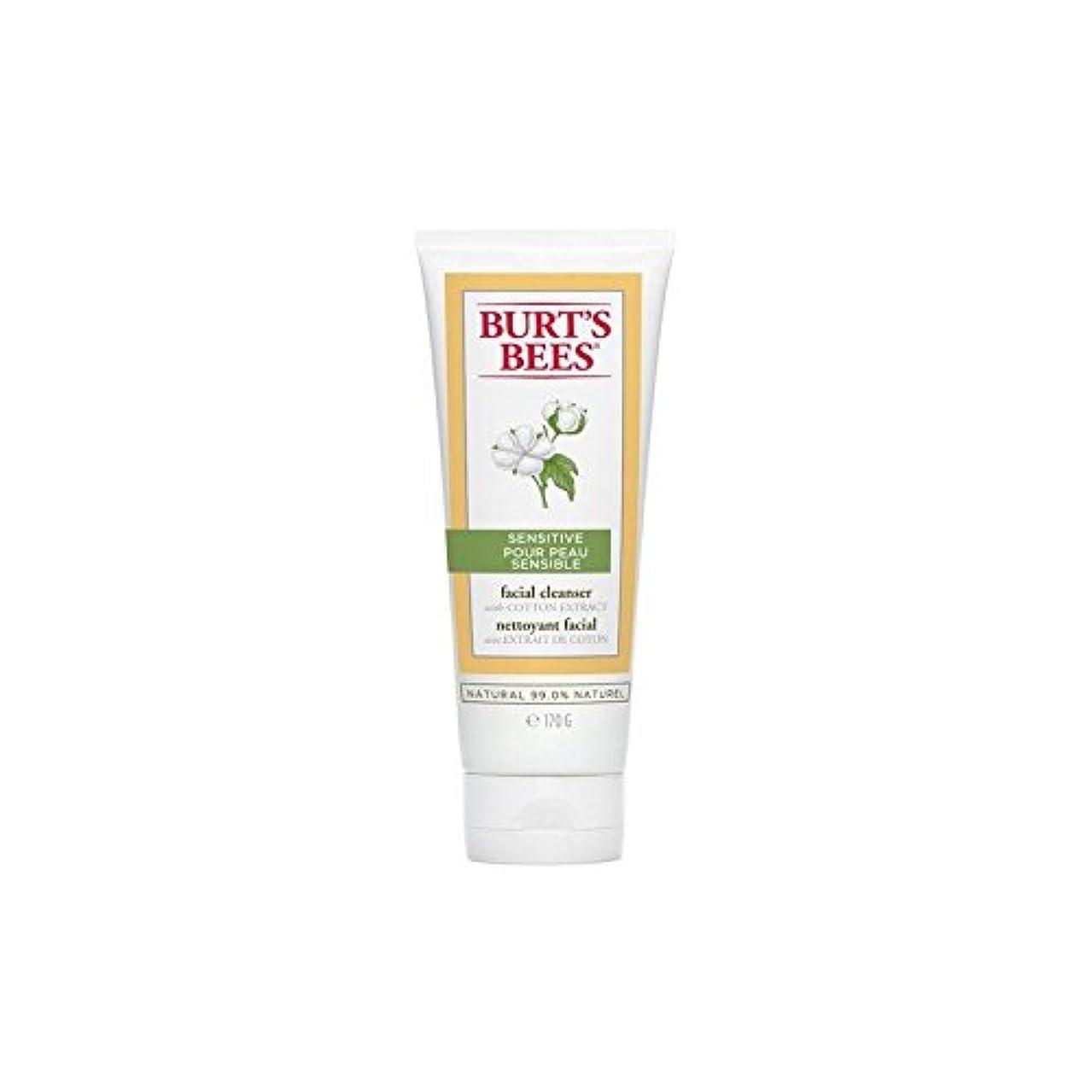 枝ウェーハシビックBurt's Bees Sensitive Facial Cleanser 170G (Pack of 6) - バーツビー敏感な洗顔料の170グラム x6 [並行輸入品]
