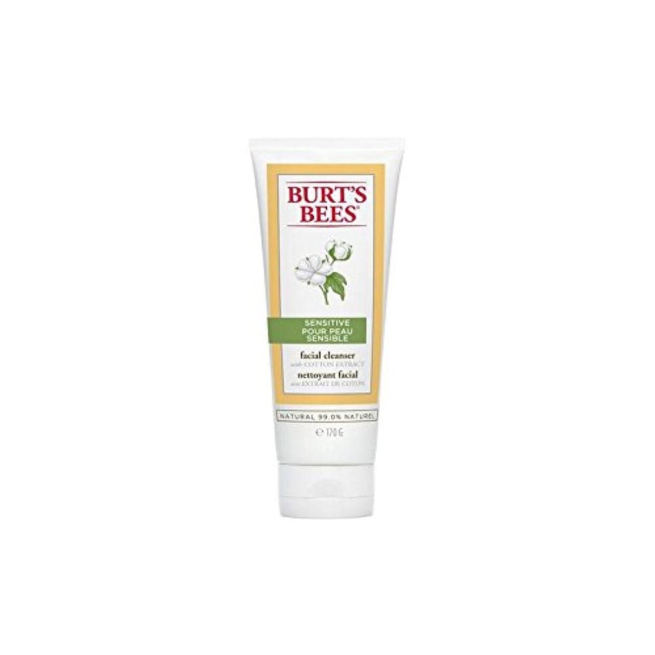 最初は座標ぶどうBurt's Bees Sensitive Facial Cleanser 170G - バーツビー敏感な洗顔料の170グラム [並行輸入品]
