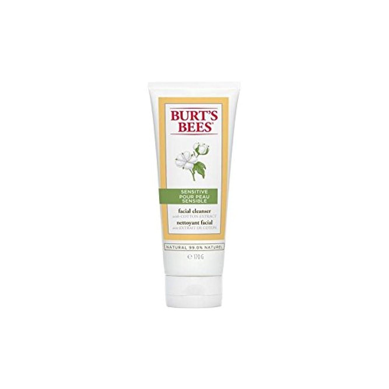 優越泳ぐさびたバーツビー敏感な洗顔料の170グラム x4 - Burt's Bees Sensitive Facial Cleanser 170G (Pack of 4) [並行輸入品]