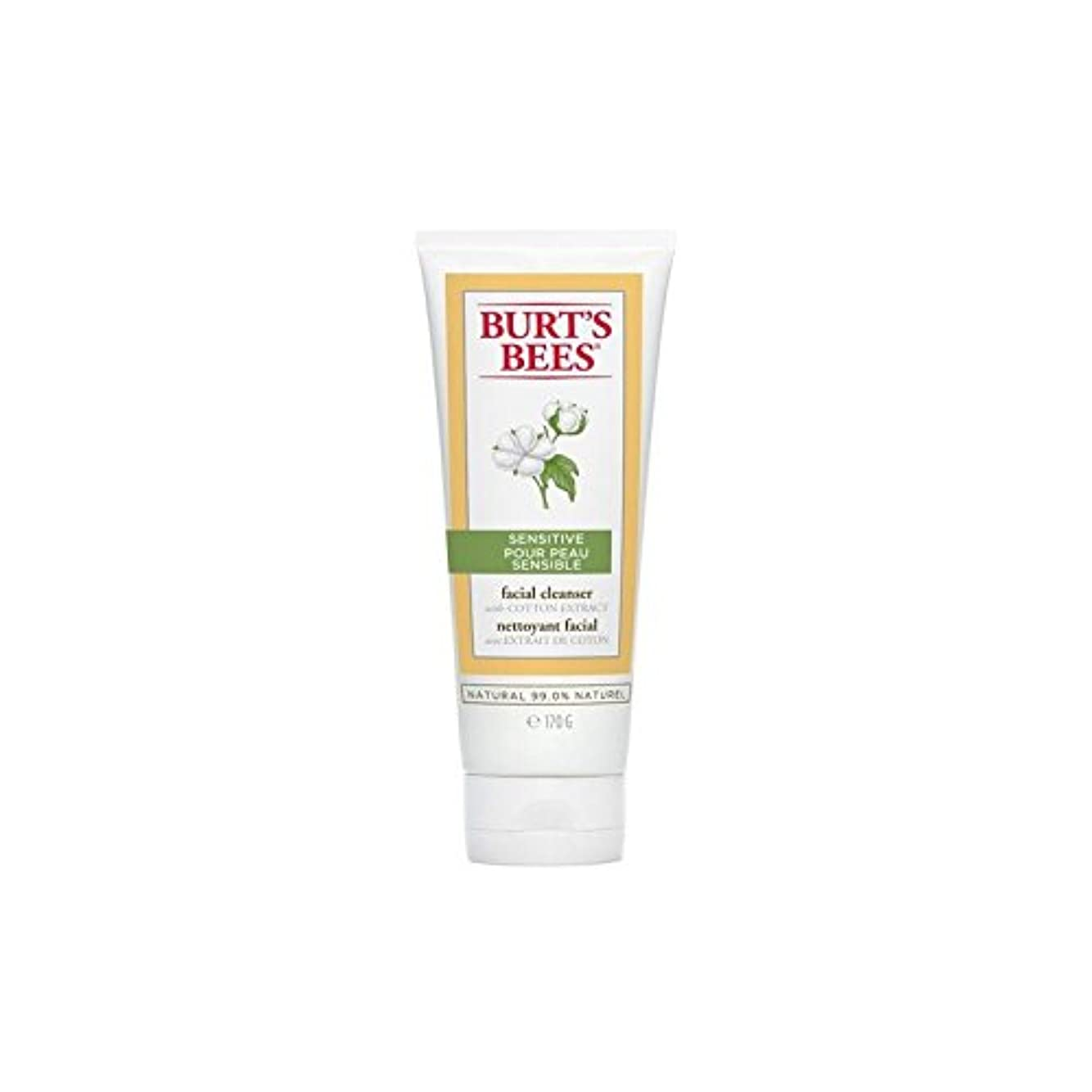 長くする見せます正気Burt's Bees Sensitive Facial Cleanser 170G (Pack of 6) - バーツビー敏感な洗顔料の170グラム x6 [並行輸入品]