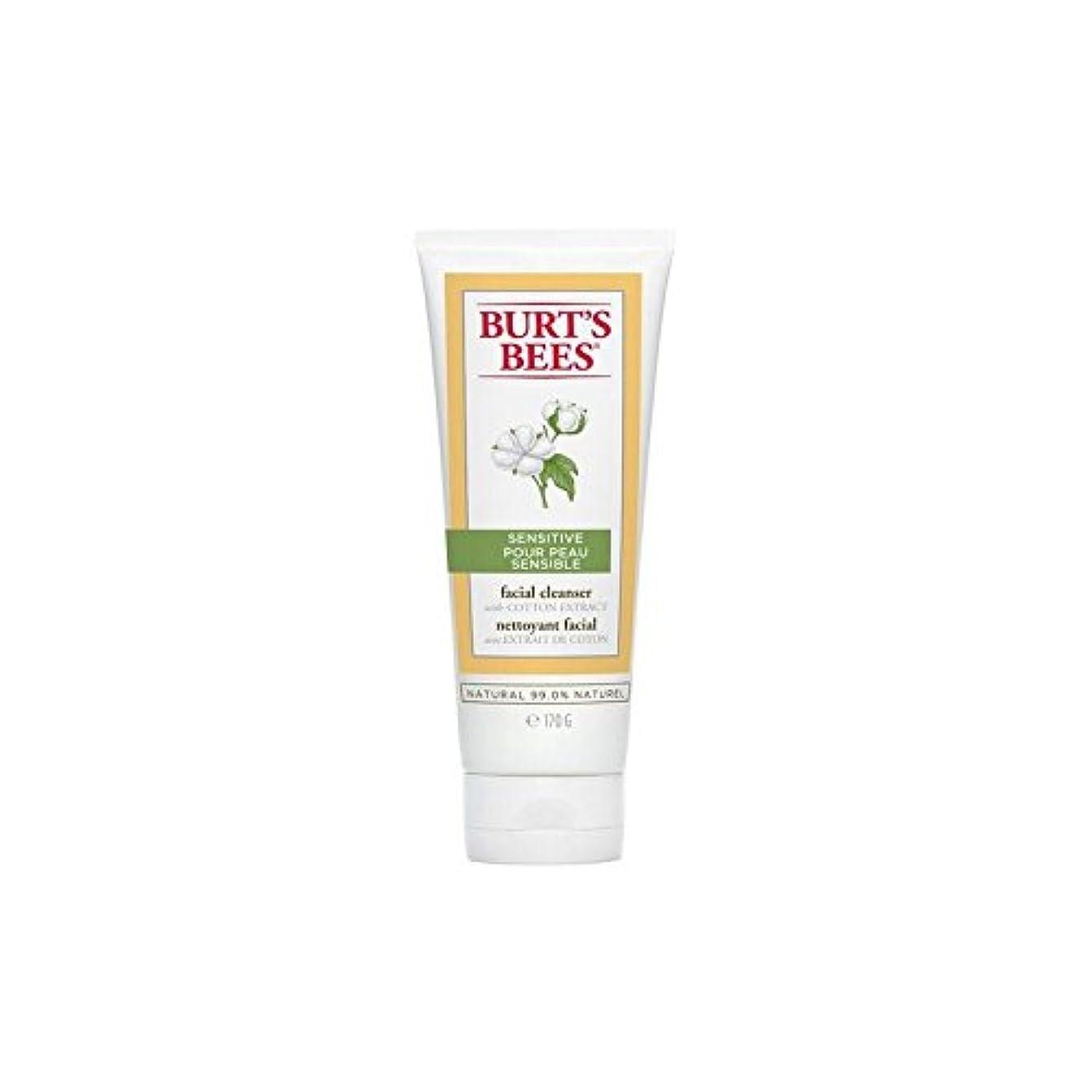 債務者保安組み合わせバーツビー敏感な洗顔料の170グラム x4 - Burt's Bees Sensitive Facial Cleanser 170G (Pack of 4) [並行輸入品]