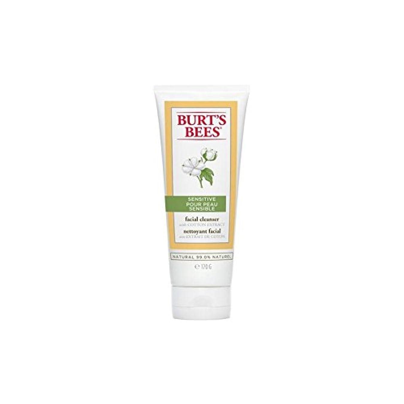 娘閉塞火炎バーツビー敏感な洗顔料の170グラム x4 - Burt's Bees Sensitive Facial Cleanser 170G (Pack of 4) [並行輸入品]